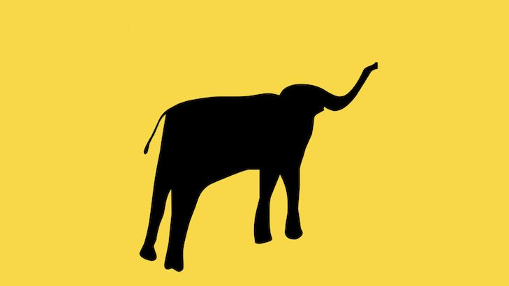 A silhouette of an elephant on a yellow background